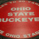Ohio State Buckeyes floor mat
